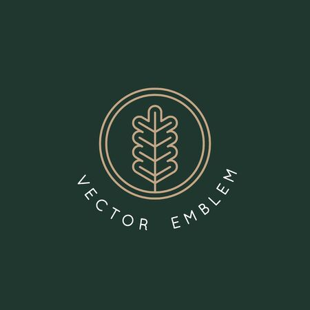 Vector   design template with oak leaf - abstract emblem and symbol