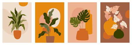 Vector set of abstract with tropical leaves and plants