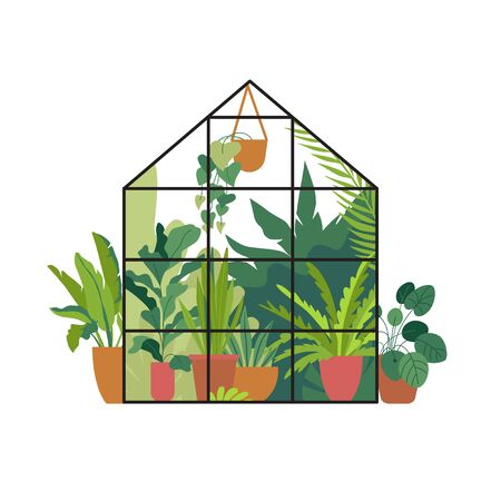 Vector illustration in flat simple style - greenhouse with plants, stylish urban jungle poster or print for home gardening