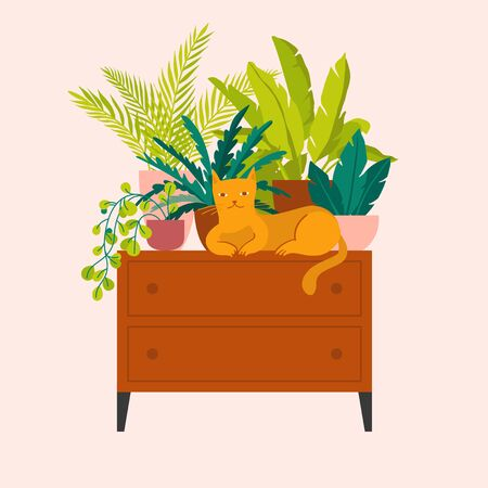 Vector illustration in flat trendy style - simple minimal interior with green decorative houseplants in pots and planters and cat - urban jungle illustration
