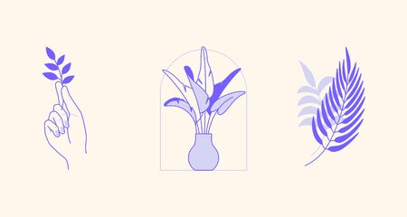 Vector abstract design templates and illustration in minimal linear style - minimalistic modern art - palm leaf, hand with leaf and vase with plant - abstract t-shirt print  - beauty and fashion concept