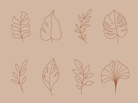 Vector set of logo design templates and monogram concepts in trendy linear style - floral design elements for greeting cards and prints - emblem for fashion, beauty and jewellery industry 矢量图像