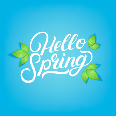 Hello Spring hand written lettering with realistic green leaves for greeting card, poster, invitation template.