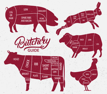 Animal farm set. Cut of beef, pork, lamb, chicken, rabbit. Poster Butchers diagram for groceries, meat stores, butcher shop, farmer market.