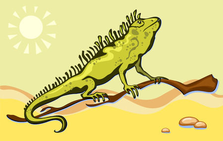 Green lizard, iguana in the desert sand Vector