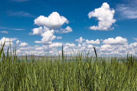 Abstracte achtergrond met groene gras en wolken op de blauwe hemel