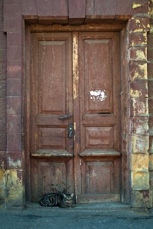 Kat zit aan de oude, donkere houten deur in de bakstenen muur van rode baksteen