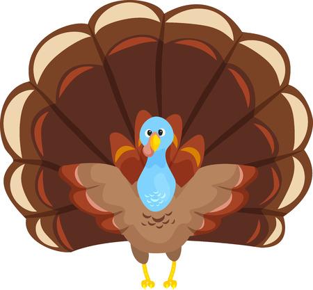 Cute Turkey Illustration