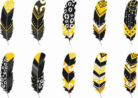 Six Black, White, Gold Boho Feathers Stok Fotoğraf