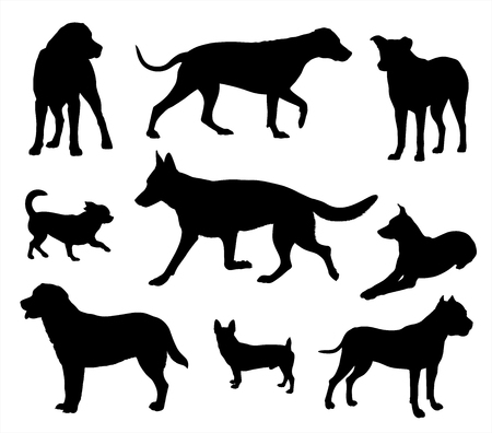 Dog silhouette, dog in different poses black dogs silhouettes isolated on white background
