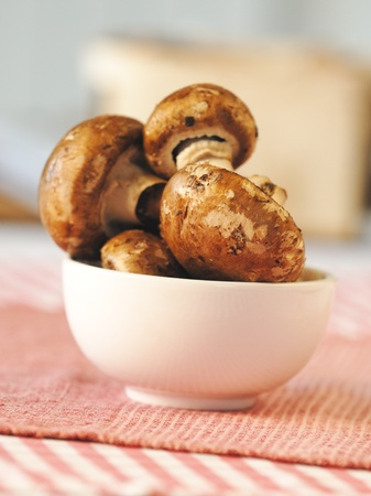 Fresh mushrooms on burlap Stock Photo - 9860467