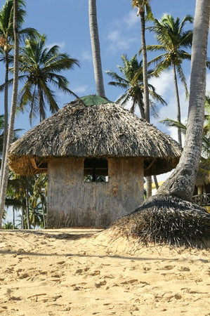 Typical hut on the Dominican beach Stock Photo - 9979299