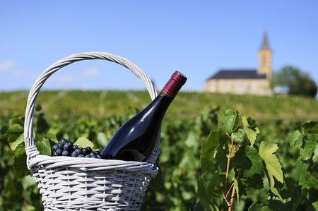 reasons: Bottle of red wine in a basket of reasons near a typical church