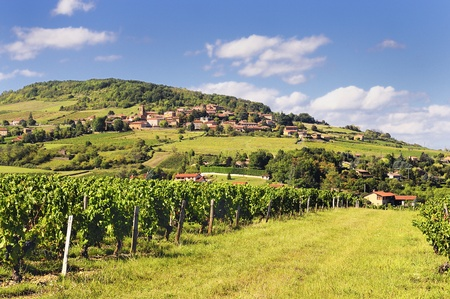 steeples: Medieval golden village called TheizŽ  Beaujolais   France  Stock Photo