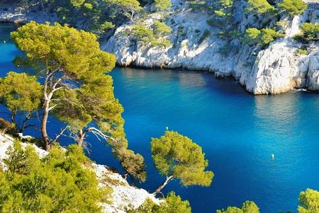 marseille: Calanques van Port Pin in Cassis in Frankrijk bij Marseille