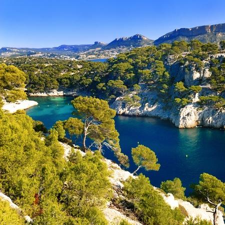 Calas de pin del puerto de Cassis en Francia cerca de Marsella