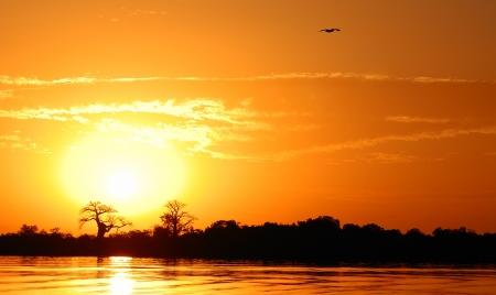 africa sunset: African landscape, Senegal, sine saloum