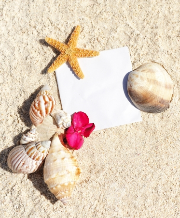blank paper on white sand beach with starfish and shells like summer vacation background photo