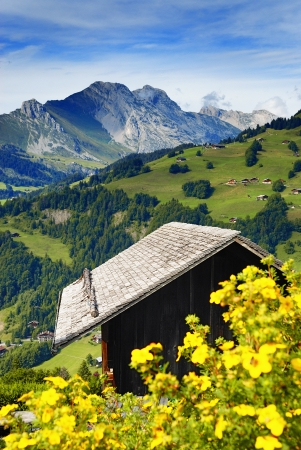 a nice view of a chalet in summer, with flower and alps mountains, France