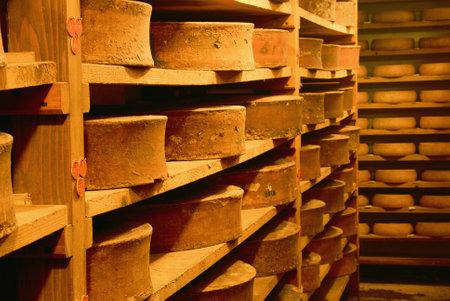 verkostet Käse Raffination in einem traditionellen Weinkeller