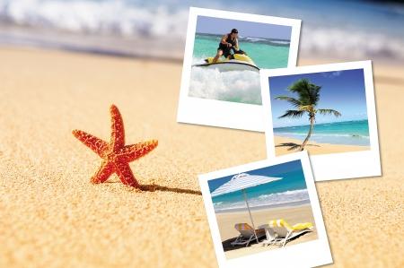 sea, starfish, sea outdoor with hlidays pics photo