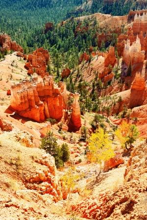 spires: spectacular Hoodoo rock spires of Bryce Canyon, Utah, USA