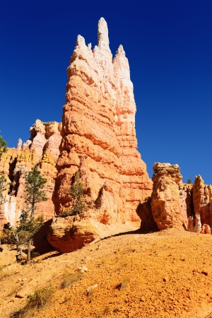 spectacular Hoodoo rock spires of Bryce Canyon, Utah, USA Stock Photo - 16243741