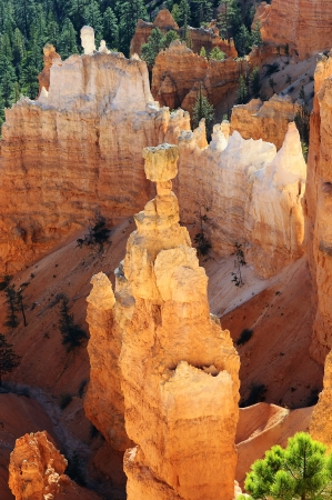 spectacular Hoodoo rock spires of Bryce Canyon, Utah, USA Stock Photo - 16576885