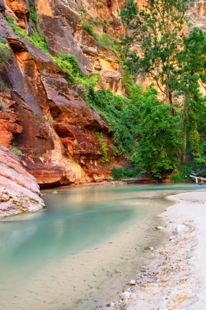 Virgin River in Zion national parc, Utah, Southwest, USA photo