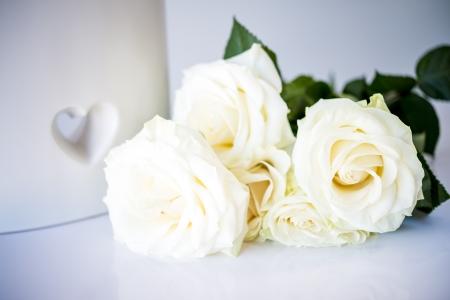 tenderly: mazzo di rose belle e teneramente bianco