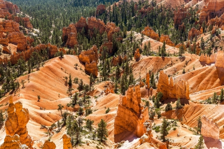 spectacular Hoodoo rock spires of Bryce Canyon, Utah, USA Stock Photo - 20883902