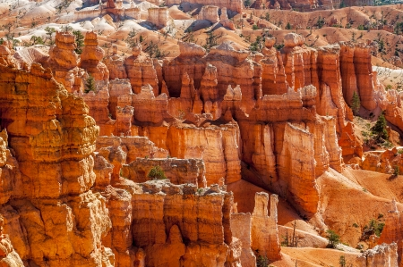 hoodoo: spectacular Hoodoo rock spires of Bryce Canyon, Utah, USA