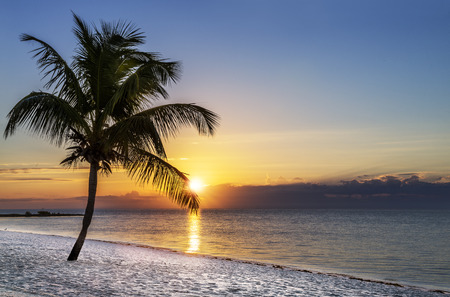 florida landscape: Beautiful sunrise at Key West, Florida, USA