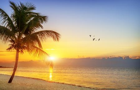 florida beach: Beautiful sunrise at Key West, Florida, USA
