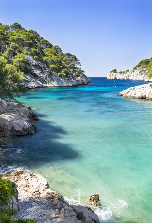 swimming in the sea: Calanques of Port Pin in Cassis in France near Marseille