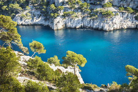 south coast: Calanques of Port Pin in Cassis in France near Marseille