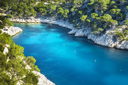 Calanques of Port Pin in Cassis in France near Marseille