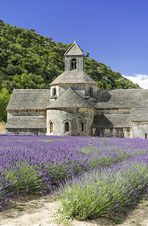 luberon: Abbey of Senanque and blooming rows lavender flowers. Gordes, Luberon, Vaucluse, Provence, France.  Stock Photo