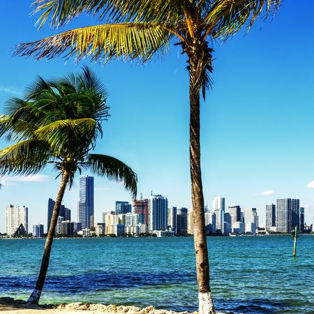 city of miami: Miami Downtown skyline in daytime with Biscayne Bay.