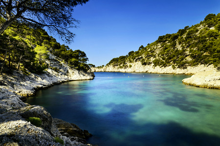 rock creek: Calanques of Port Pin in Cassis in France near Marseille