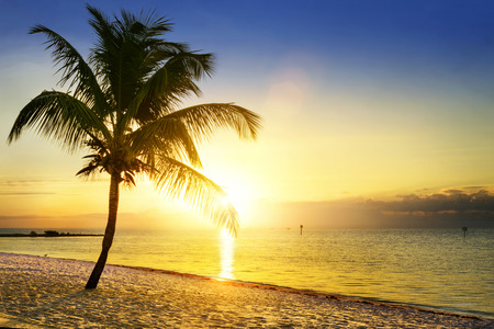 florida beach: Beautiful sunrise at Key West, Florida, USA