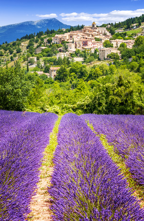 Aurel little village  in south of france with a lavender field in front of it Standard-Bild
