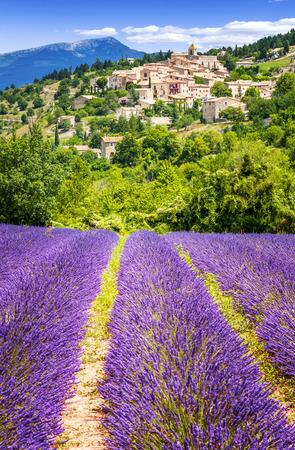 Aurel little village  in south of france with a lavender field in front of it Standard-Bild