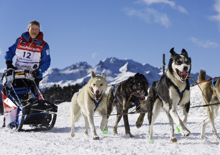 mushing: SARDIERES VANOISE, FRANCE - JANUARY 20 2016 - the GRANDE ODYSSEE the hardest mushers race in savoie Mont-Blanc, Philippe Pontier, french musher, Vanoise, Alps