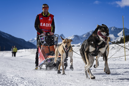 mushing: AUSSOIS SUR ARC, VANOISE, FRANCE - JANUARY 20 2016 - the GRANDE ODYSSEE the hardest mushers race in savoie Mont-Blanc, Remy COSTE, french musher, Vanoise, Alps