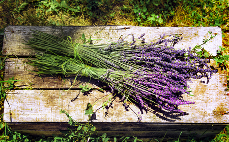 fragrant scents: lavender field in south of France with decorative basket