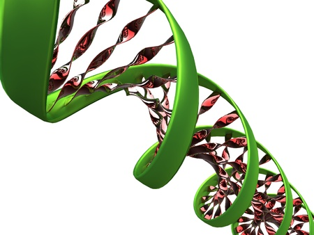 3d illustration of a dna molecule on white background Stock Photo