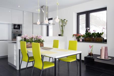 green orchid: Modern kitchen interior  Stock Photo