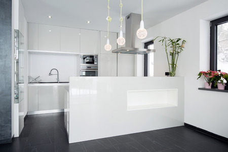 Modern kitchen interior photo
