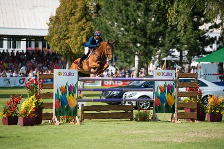 ber: BRATISLAVA, SLOVAKIA - AUGUST 10   Nisbett Patrick  BER  on horse Farah van Klapscheut jumps over hurdle during Mercedes-Benz Grand Prix Bratislava, Slovakia